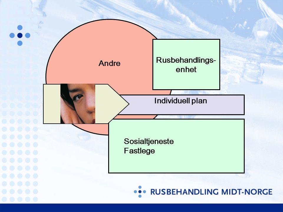 Andre Rusbehandlings- enhet Sosialtjeneste Fastlege Individuell plan