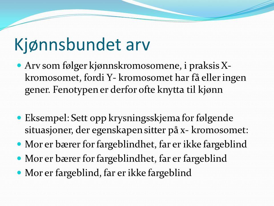 Kjønnsbundet arv  Arv som følger kjønnskromosomene, i praksis X- kromosomet, fordi Y- kromosomet har få eller ingen gener. Fenotypen er derfor ofte k