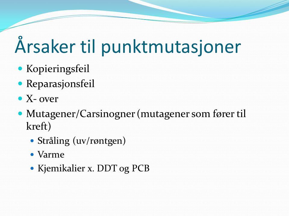 Årsaker til punktmutasjoner  Kopieringsfeil  Reparasjonsfeil  X- over  Mutagener/Carsinogner (mutagener som fører til kreft)  Stråling (uv/røntge