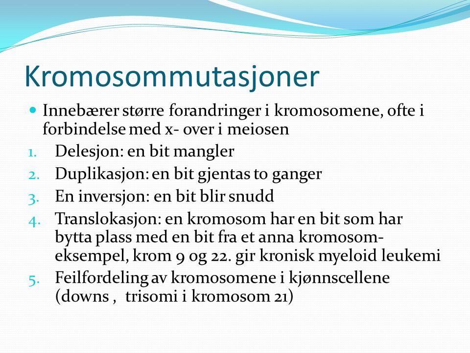 Kromosommutasjoner  Innebærer større forandringer i kromosomene, ofte i forbindelse med x- over i meiosen 1. Delesjon: en bit mangler 2. Duplikasjon: