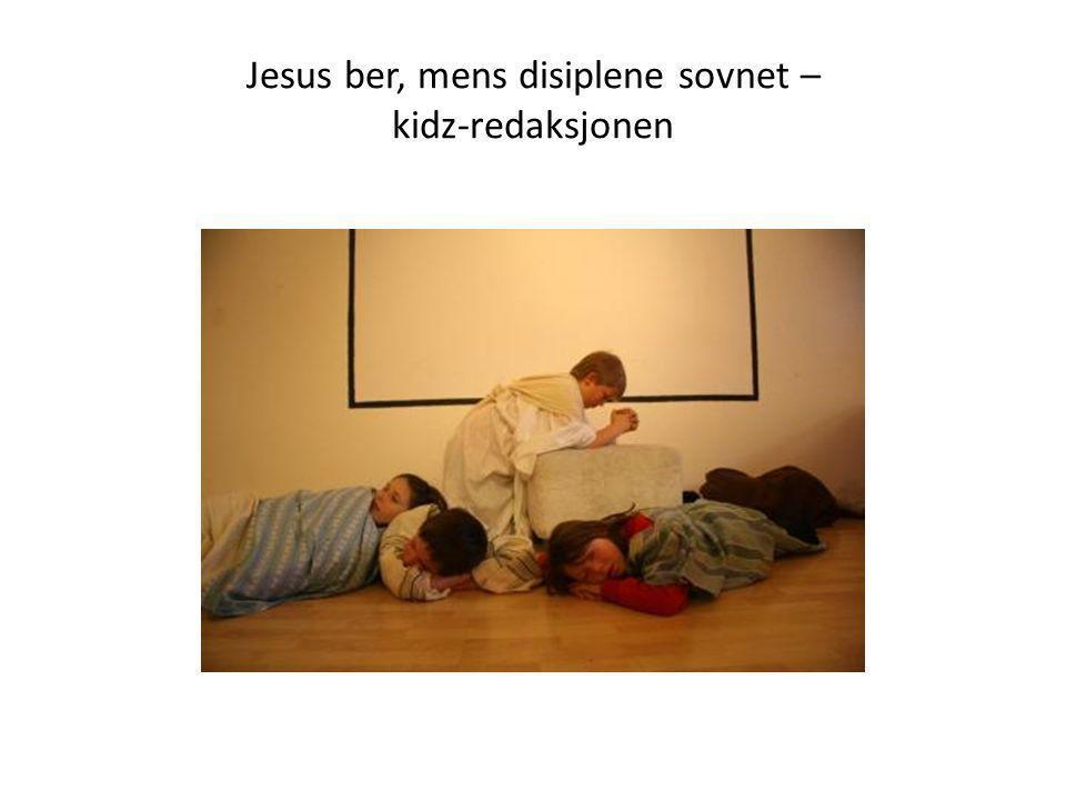 Jesus ber, mens disiplene sovnet – kidz-redaksjonen