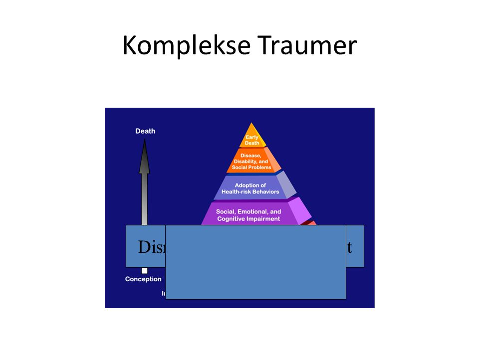 Komplekse Traumer Disrupted neurodevelopment