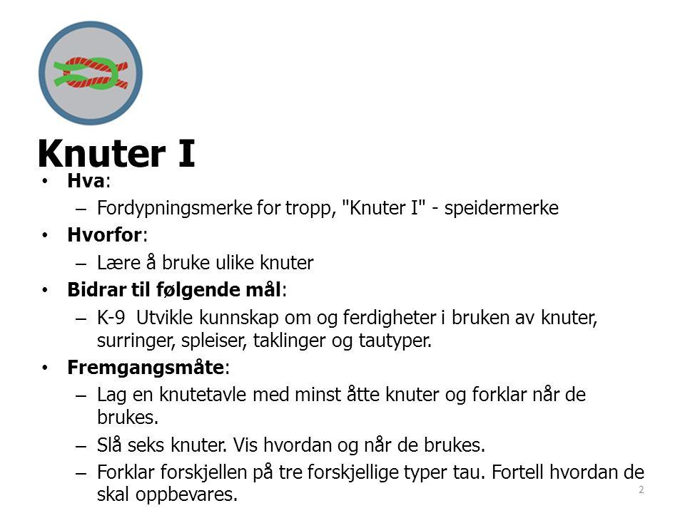 Knuter I •Hva: –Fordypningsmerke for tropp,