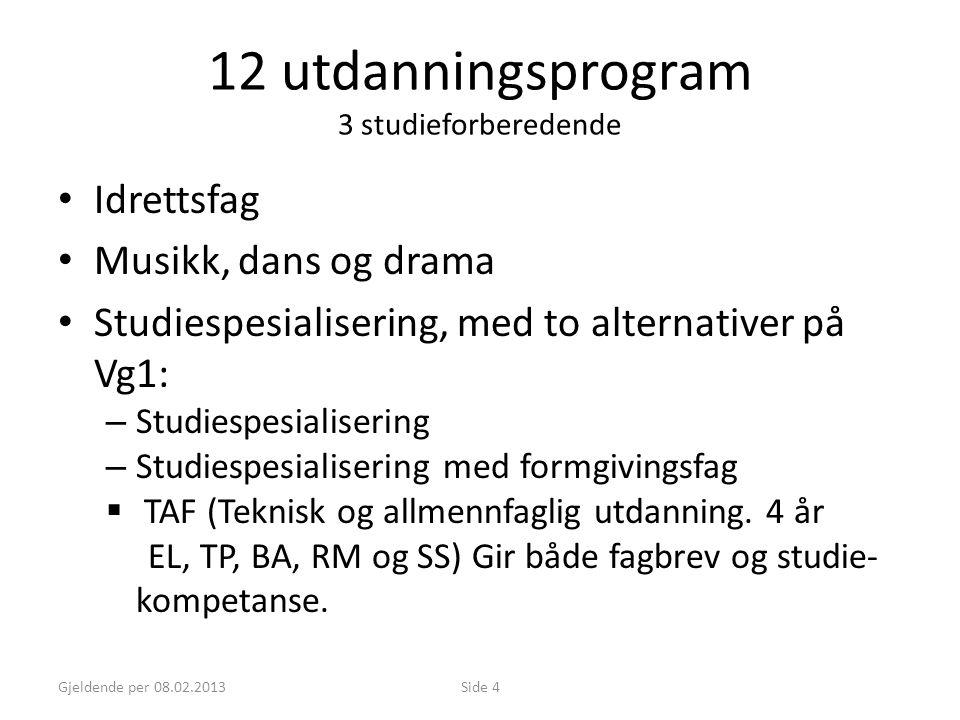 Gjeldende per 08.02.2013Side 4 12 utdanningsprogram 3 studieforberedende • Idrettsfag • Musikk, dans og drama • Studiespesialisering, med to alternati