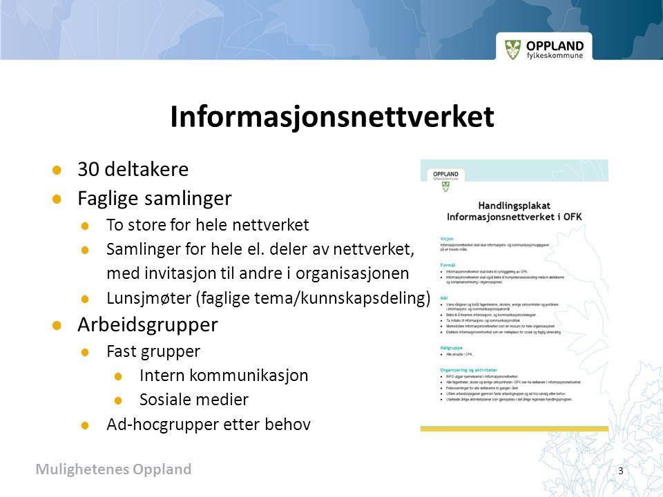 Mulighetenes Oppland Informasjonsnettverket  30 deltakere  Faglige samlinger  To store for hele nettverket  Samlinger for hele el.