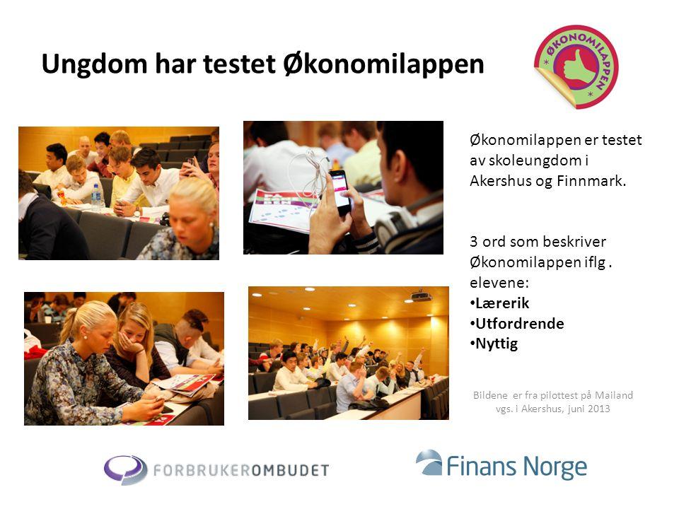 Ungdom har testet Økonomilappen Økonomilappen er testet av skoleungdom i Akershus og Finnmark. 3 ord som beskriver Økonomilappen iflg. elevene: • Lære