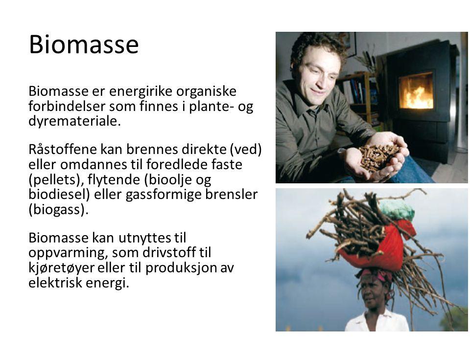 Biomasse Biomasse er energirike organiske forbindelser som finnes i plante- og dyremateriale. Råstoffene kan brennes direkte (ved) eller omdannes til