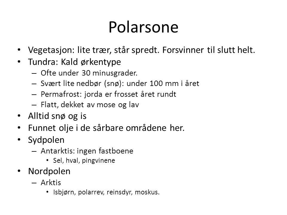 Polarsone • Vegetasjon: lite trær, står spredt. Forsvinner til slutt helt. • Tundra: Kald ørkentype – Ofte under 30 minusgrader. – Svært lite nedbør (
