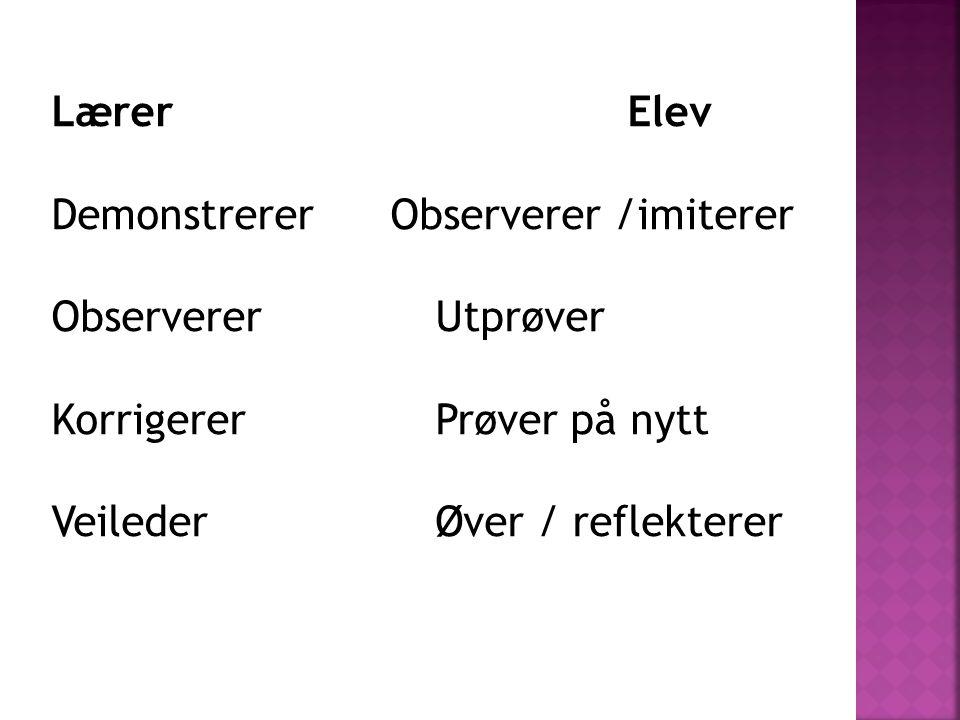 LærerElev Demonstrerer Observerer /imiterer ObservererUtprøver KorrigererPrøver på nytt VeilederØver / reflekterer