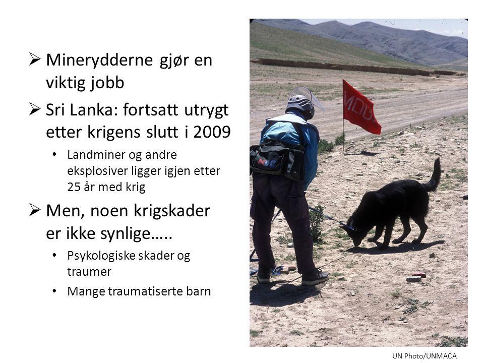  Minerydderne gjør en viktig jobb  Sri Lanka: fortsatt utrygt etter krigens slutt i 2009 • Landminer og andre eksplosiver ligger igjen etter 25 år med krig  Men, noen krigskader er ikke synlige…..