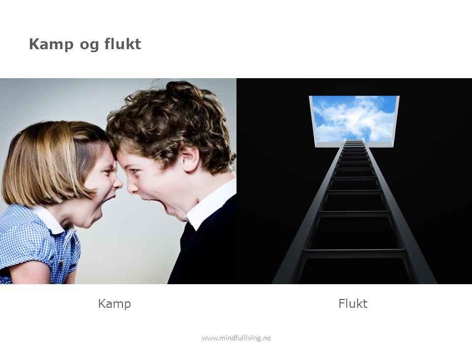 Kamp og flukt www.mindfulliving.no KampFlukt