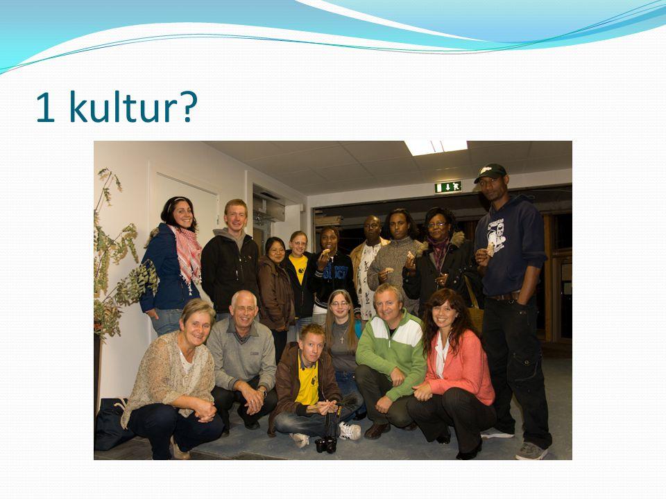 1 kultur?