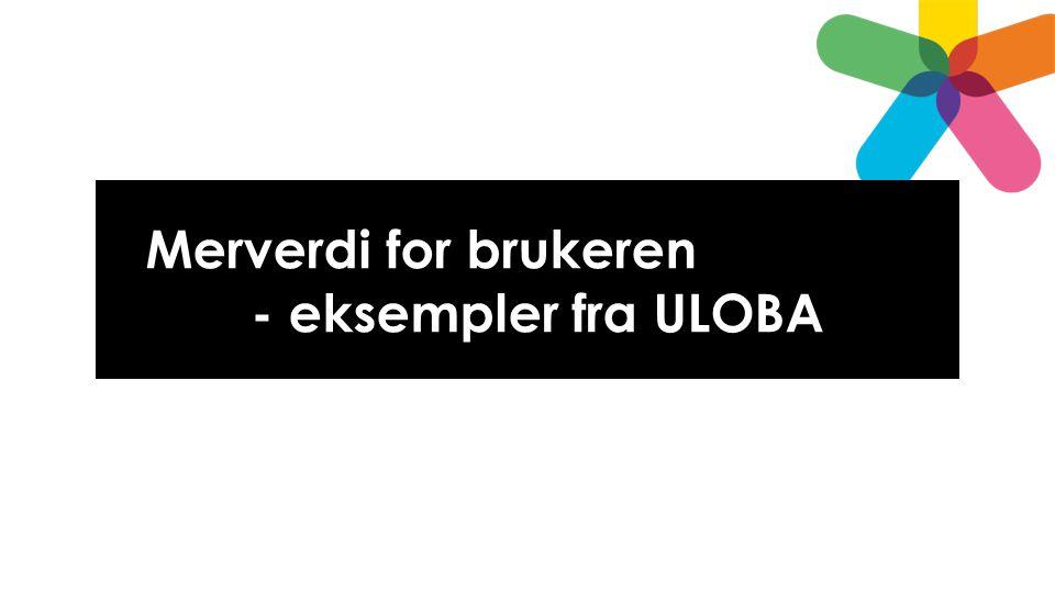 Merverdi for brukeren - eksempler fra ULOBA