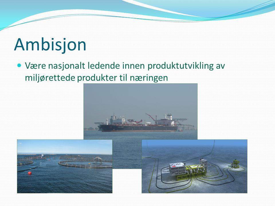 Ambisjon  Være nasjonalt ledende innen produktutvikling av miljørettede produkter til næringen