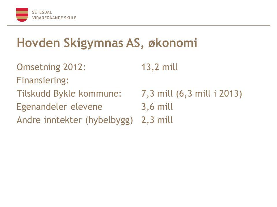 Hovden Skigymnas AS, økonomi Omsetning 2012:13,2 mill Finansiering: Tilskudd Bykle kommune:7,3 mill (6,3 mill i 2013) Egenandeler elevene3,6 mill Andre inntekter (hybelbygg)2,3 mill