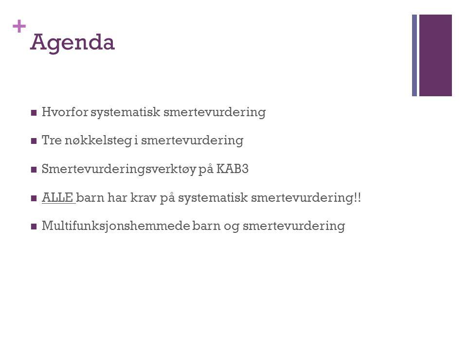 + Agenda  Hvorfor systematisk smertevurdering  Tre nøkkelsteg i smertevurdering  Smertevurderingsverktøy på KAB3  ALLE barn har krav på systematis