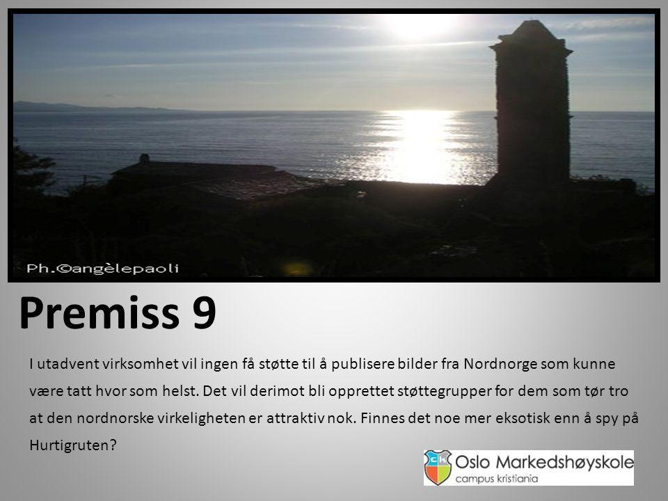 Premiss 9 I utadvent virksomhet vil ingen få støtte til å publisere bilder fra Nordnorge som kunne være tatt hvor som helst.