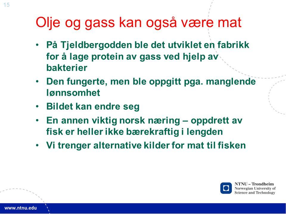 15 Olje og gass kan også være mat •På Tjeldbergodden ble det utviklet en fabrikk for å lage protein av gass ved hjelp av bakterier •Den fungerte, men ble oppgitt pga.