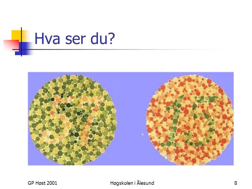 GP Høst 2001Høgskolen i Ålesund8 Hva ser du?