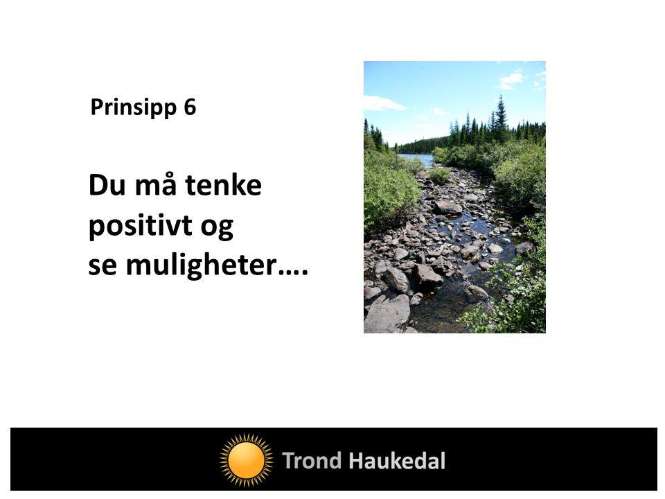 Prinsipp 6 Du må tenke positivt og se muligheter….