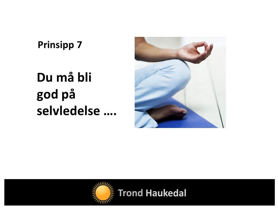 Prinsipp 7 Du må bli god på selvledelse ….
