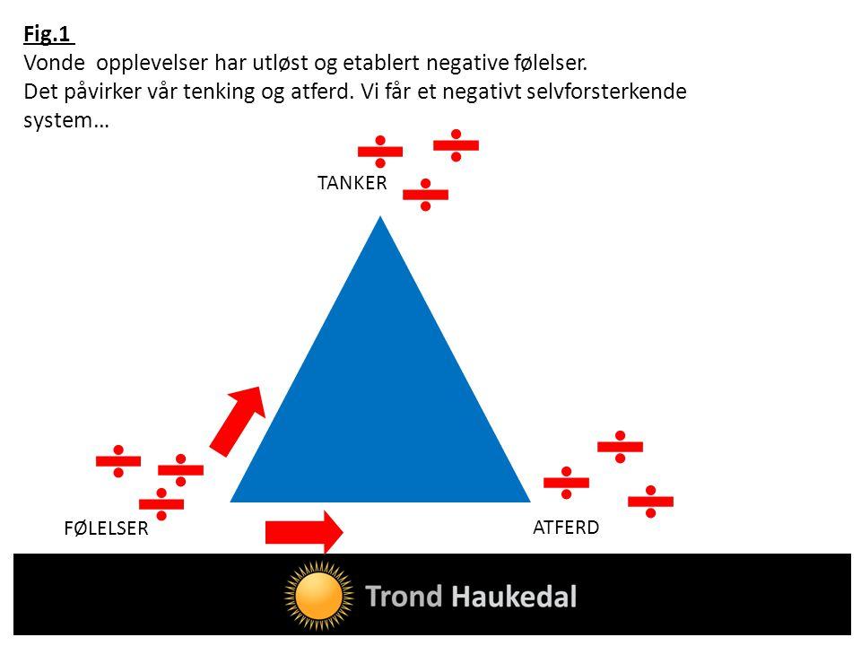 Fig.1 Vonde opplevelser har utløst og etablert negative følelser. Det påvirker vår tenking og atferd. Vi får et negativt selvforsterkende system… TANK
