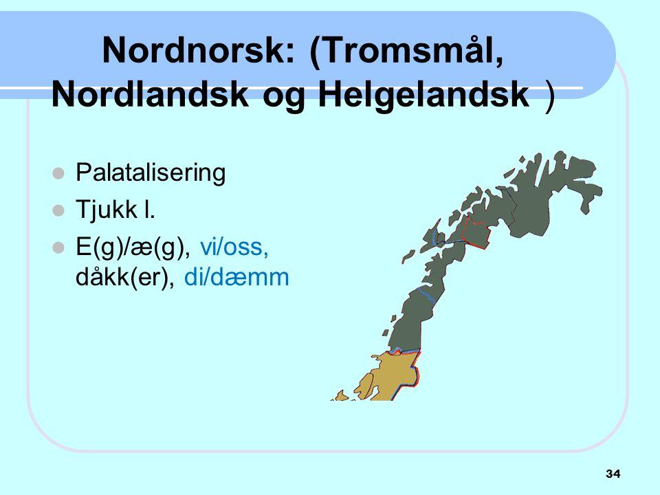 Nordnorsk: (Tromsmål, Nordlandsk og Helgelandsk )  Palatalisering  Tjukk l.  E(g)/æ(g), vi/oss, dåkk(er), di/dæmm 34