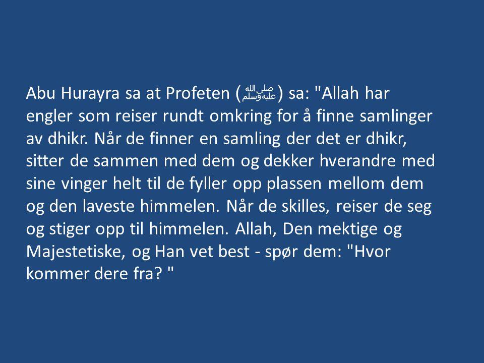 Abu Hurayra sa at Profeten ( ﷺ ) sa: Allah har engler som reiser rundt omkring for å finne samlinger av dhikr.