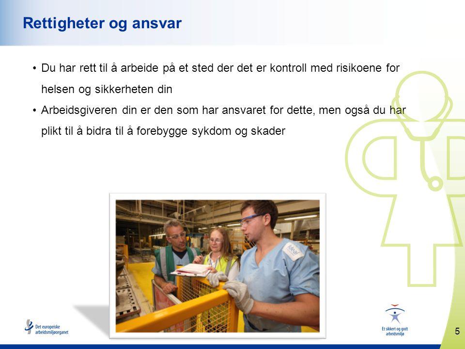 16 www.healthy-workplaces.eu Tilbud om kampanjepartnerskap Europeiske organisasjoner kan også søke om å bli kampanjepartnere.