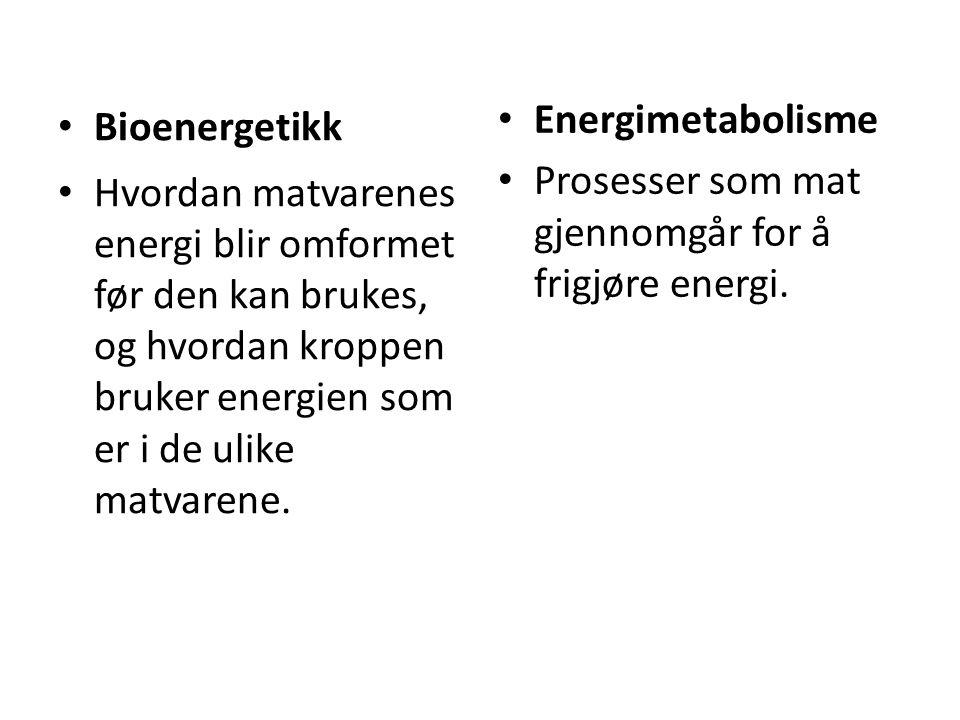 • Bioenergetikk • Hvordan matvarenes energi blir omformet før den kan brukes, og hvordan kroppen bruker energien som er i de ulike matvarene. • Energi