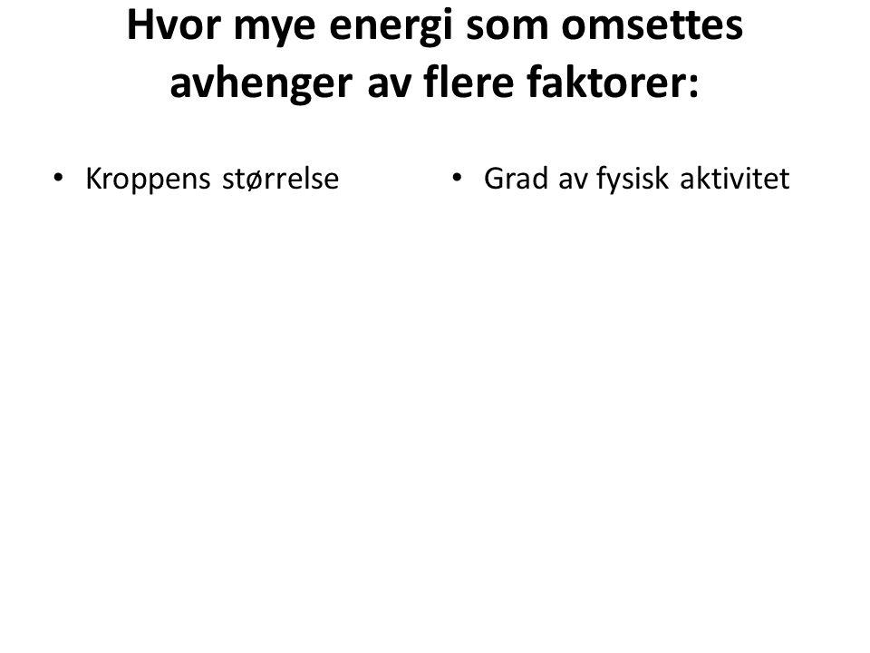 Hvor mye energi som omsettes avhenger av flere faktorer: • Kroppens størrelse • Grad av fysisk aktivitet