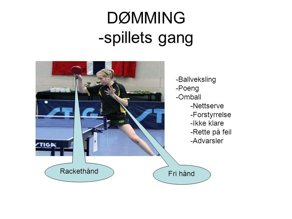 DØMMING -spillets gang -Ballveksling -Poeng -Omball -Nettserve -Forstyrrelse -Ikke klare -Rette på feil -Advarsler Rackethånd Fri hånd