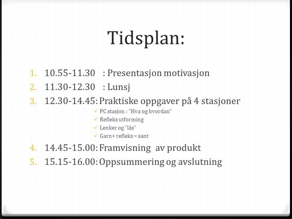"""Tidsplan: 1. 10.55-11.30: Presentasjon motivasjon 2. 11.30-12.30 : Lunsj 3. 12.30-14.45: Praktiske oppgaver på 4 stasjoner  PC stasjon : """"Hva og hvor"""