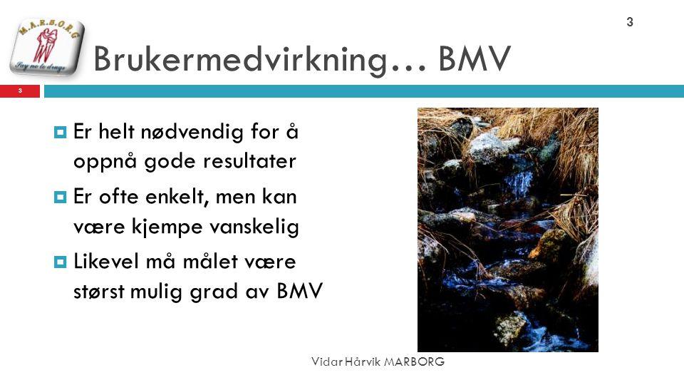 Brukermedvirkning… BMV  Er helt nødvendig for å oppnå gode resultater  Er ofte enkelt, men kan være kjempe vanskelig  Likevel må målet være størst mulig grad av BMV 3 Vidar Hårvik MARBORG 3