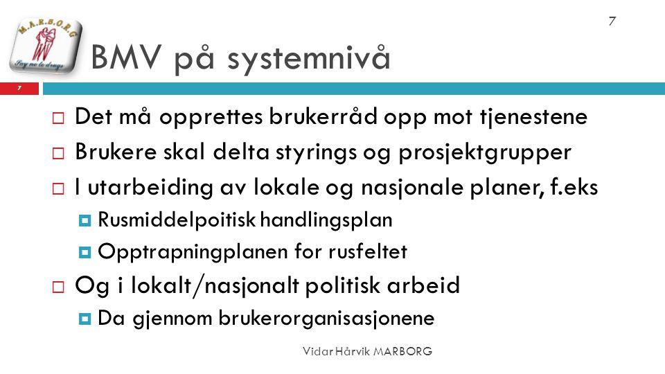 BMV på systemnivå Vidar Hårvik MARBORG 7  Det må opprettes brukerråd opp mot tjenestene  Brukere skal delta styrings og prosjektgrupper  I utarbeid