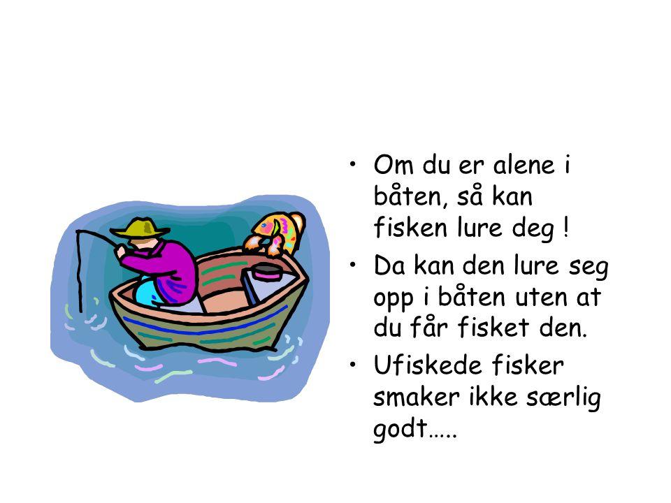 •Fisken kan være på alle sider av båten.•Derfor er det lurt å være flere som fisker.