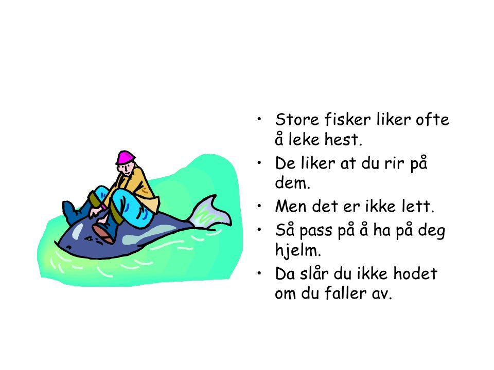 •La fiskene se hva du gjør.•Derfor er det lurt å være i vannet når du fisker.