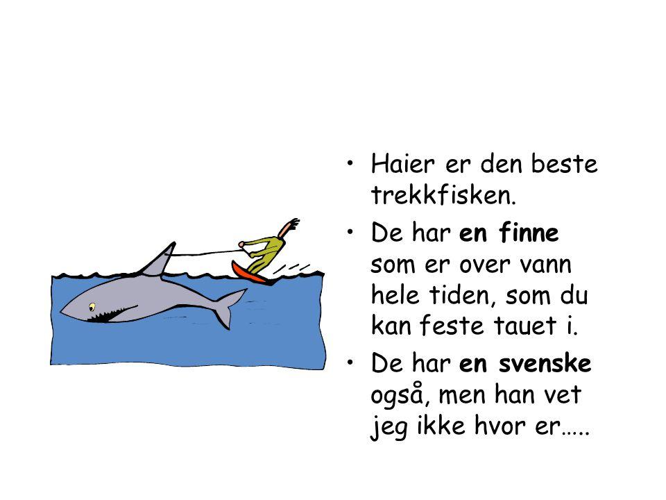 •Har du for lite fisk, så kan du dele opp en.•Bitene kan du plante i vann.