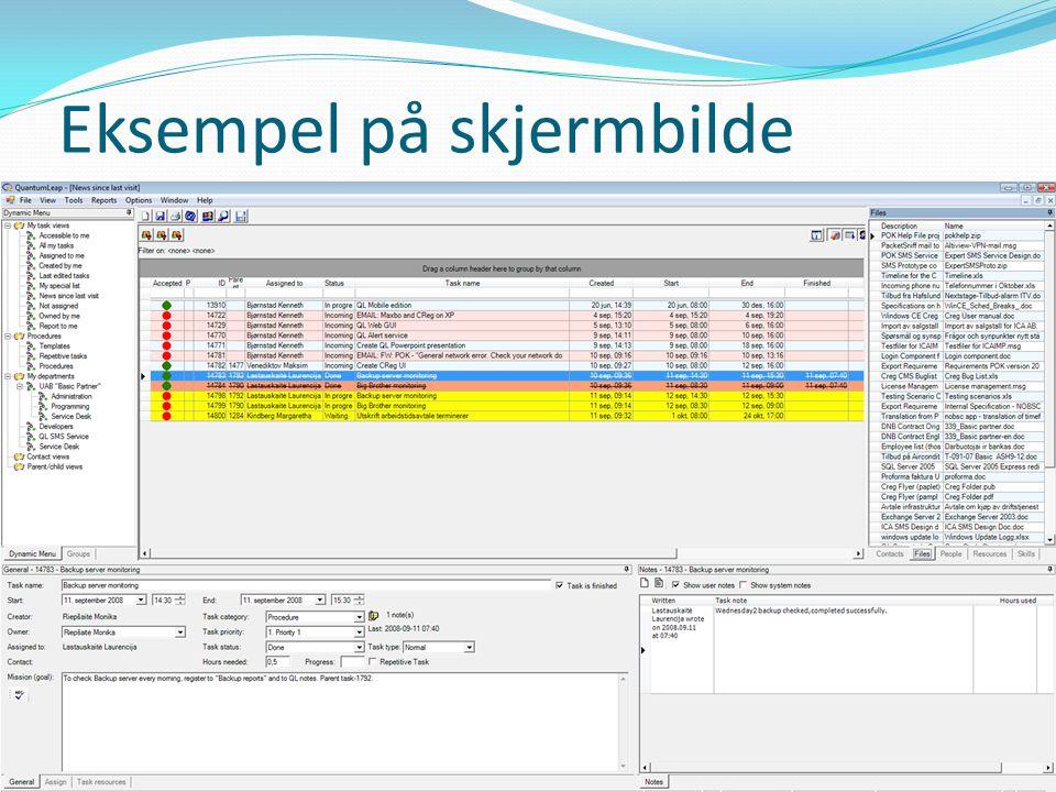 Eksempel på skjermbilde