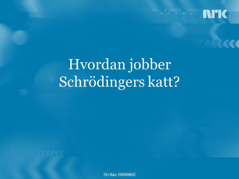 Hvordan jobber Schrödingers katt? St.Olav 20090602