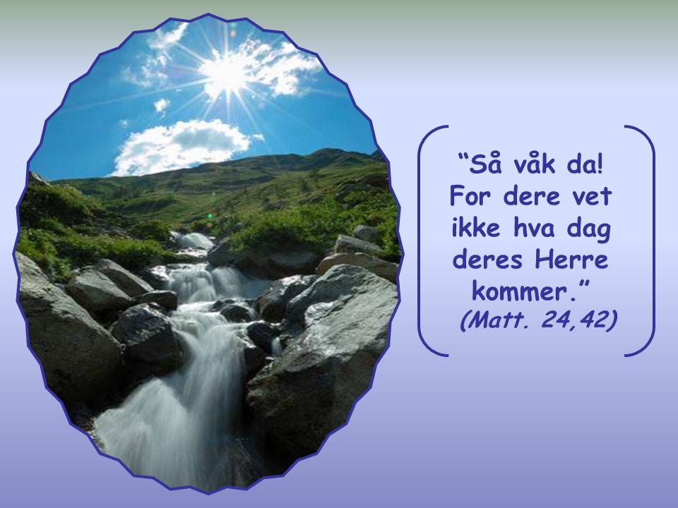Dersom Jesus kommer, vil det bety at livet på jorden er noe forbigående. Men du skal ikke ringeakte livet av den grunn, tvert imot; du må gi det din s