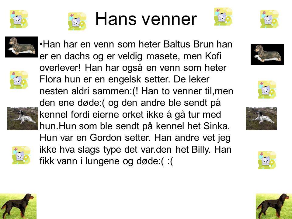 Hans venner •Han har en venn som heter Baltus Brun han er en dachs og er veldig masete, men Kofi overlever.