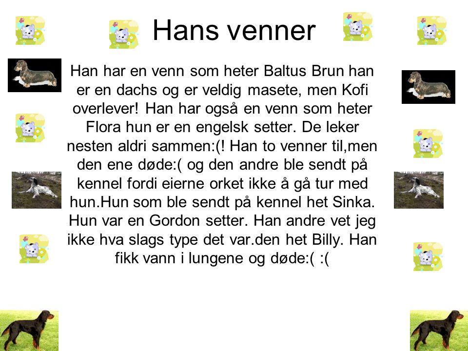 Hans venner Han har en venn som heter Baltus Brun han er en dachs og er veldig masete, men Kofi overlever.