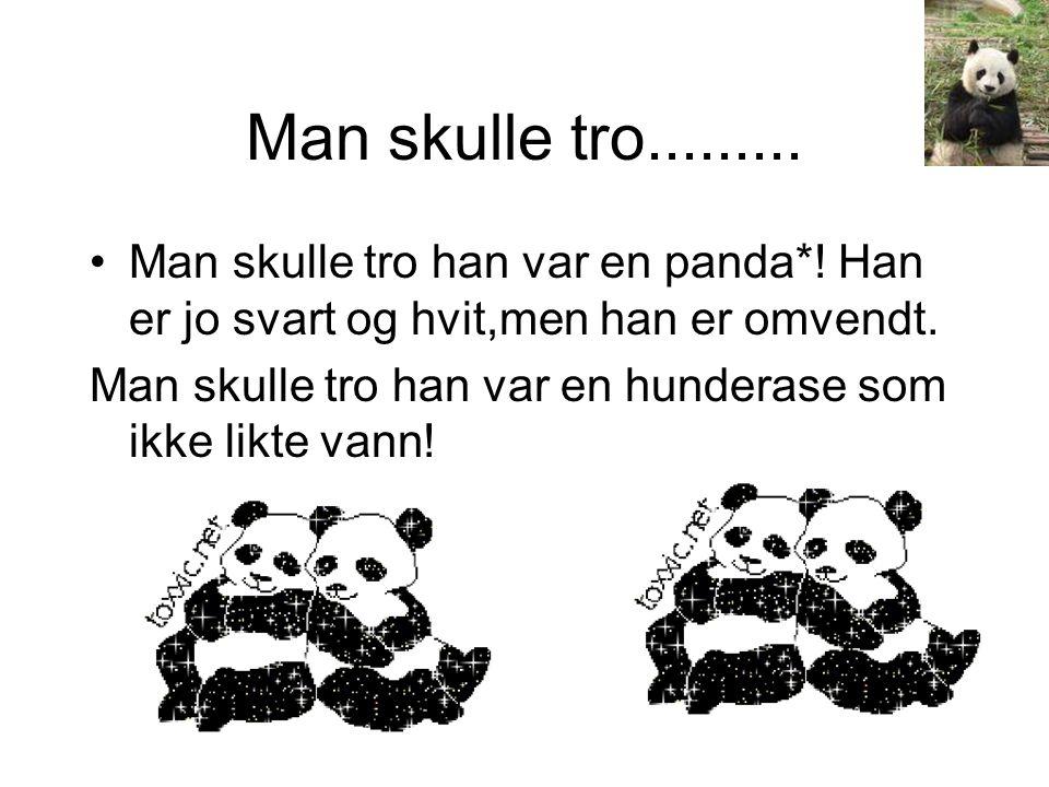 Man skulle tro.........•Man skulle tro han var en panda*.