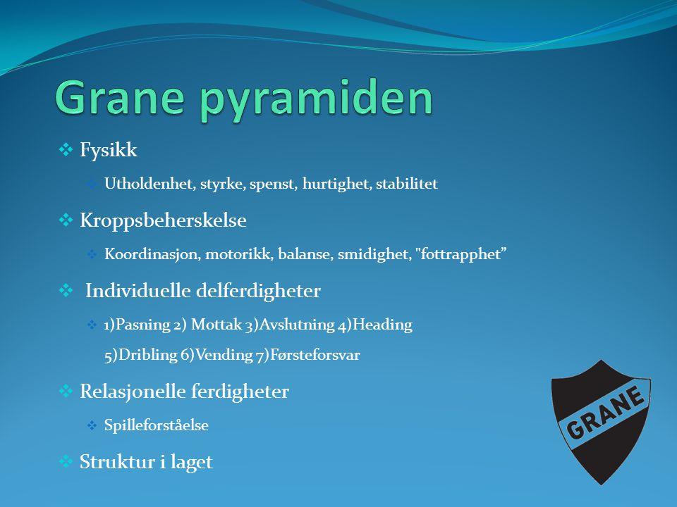  Fysikk  Utholdenhet, styrke, spenst, hurtighet, stabilitet  Kroppsbeherskelse  Koordinasjon, motorikk, balanse, smidighet,