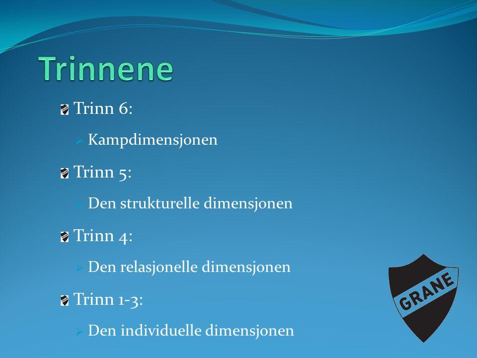 Trinn 6:  Kampdimensjonen Trinn 5:  Den strukturelle dimensjonen Trinn 4:  Den relasjonelle dimensjonen Trinn 1-3:  Den individuelle dimensjonen