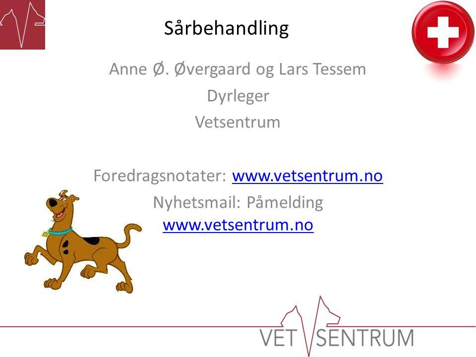 Sårbehandling Anne Ø. Øvergaard og Lars Tessem Dyrleger Vetsentrum Foredragsnotater: www.vetsentrum.nowww.vetsentrum.no Nyhetsmail: Påmelding www.vets