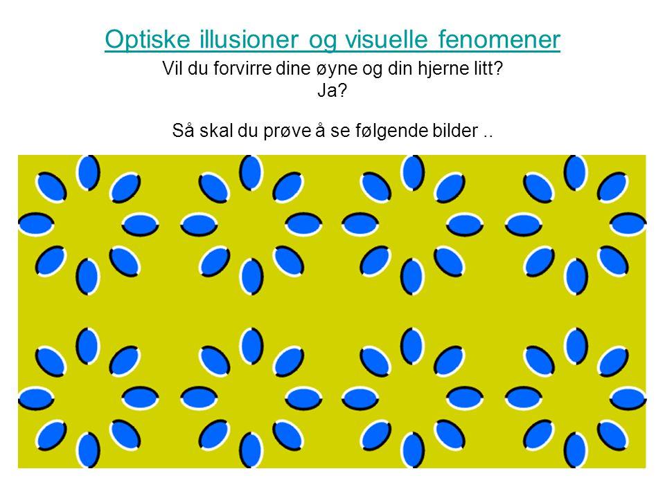 Optiske illusioner og visuelle fenomener Optiske illusioner og visuelle fenomener Vil du forvirre dine øyne og din hjerne litt? Ja? Så skal du prøve å