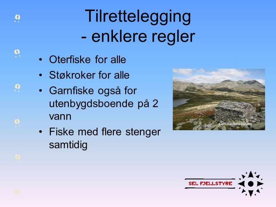 Tilrettelegging - enklere regler •Oterfiske for alle •Støkroker for alle •Garnfiske også for utenbygdsboende på 2 vann •Fiske med flere stenger samtid