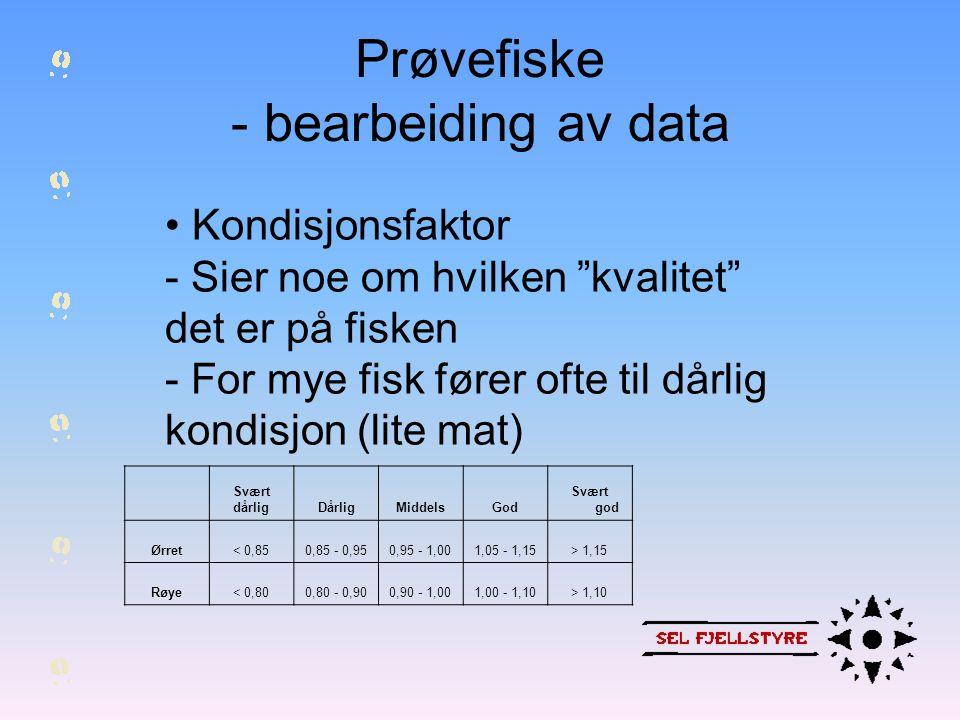 Prøvefiske - bearbeiding av data • Når er fisken gytemoden (hunnfisk) - Fisk gyter tidligere i en bestand med for mye fisk, enn i en bestand med for lite